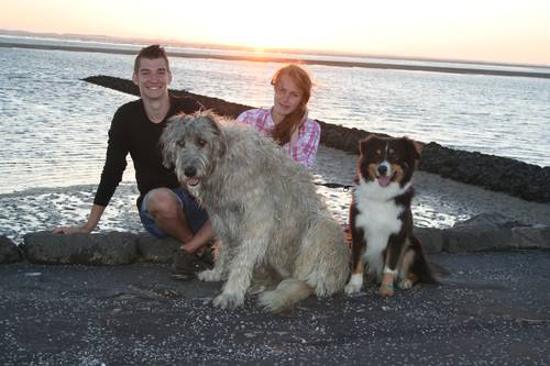 Picture of House Sitter, House Minder and Pet Sitter at Aussie House Sitters, Australia. User Marcus & Alexandra